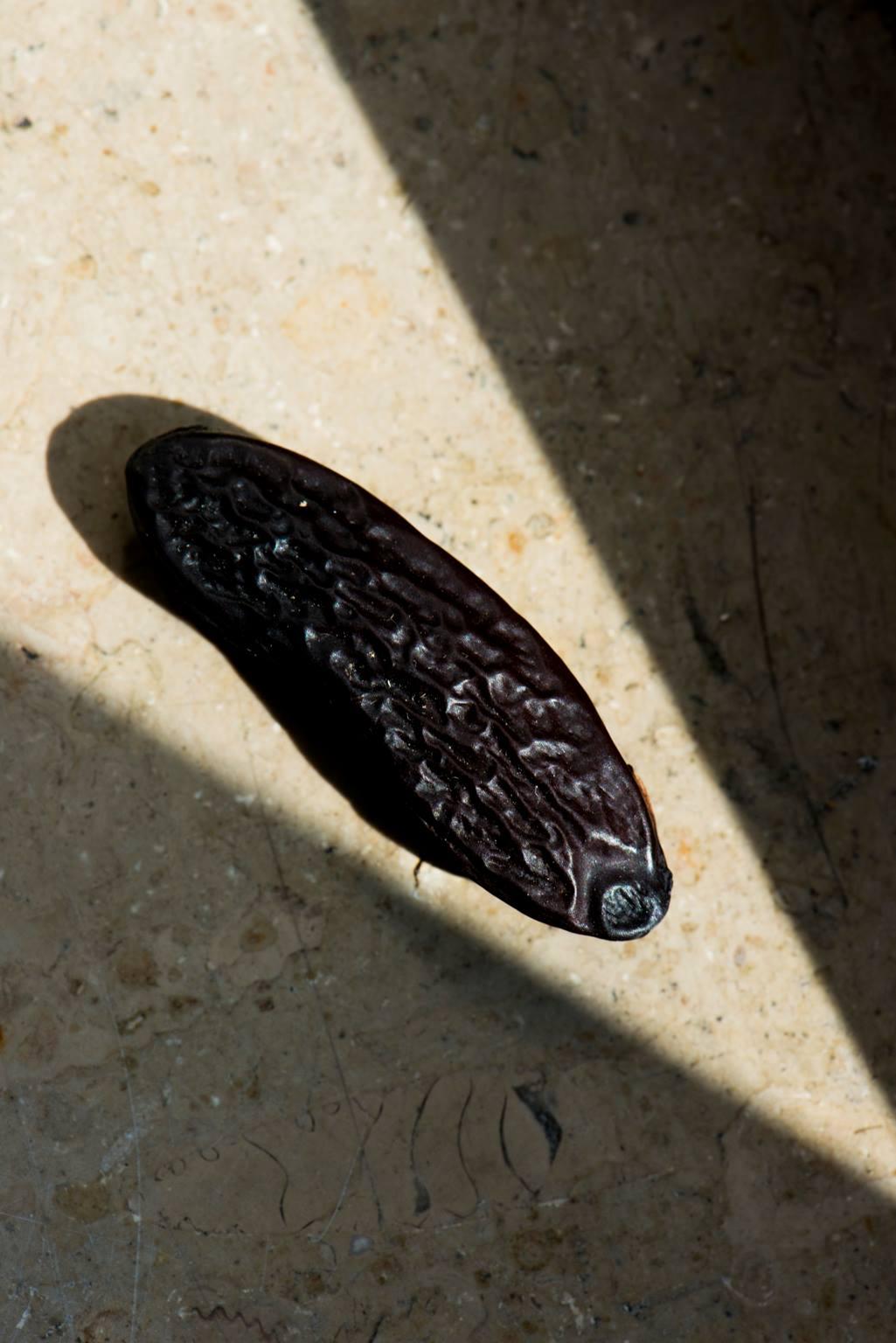Tonka Bean   Beni Tonka